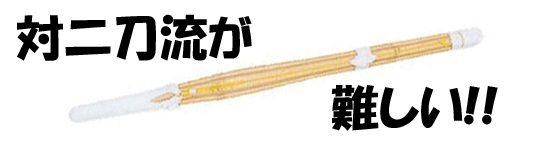 剣道 二刀流